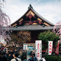 photo tour shrines in ueno park